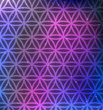 Vector Flower of Life Patternon a Cosmic Background Royalty Free Stock Photography