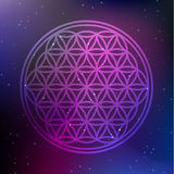 Vector Flower of Life Symbol on a Cosmic Background. Illustration Royalty Free Stock Photos