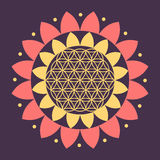 Vector Flower of Life Symbol on a Natural Background Stock Image