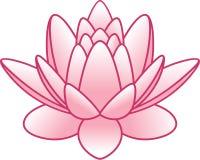 Vector flower lotus. Vector illustration of flower lotus Stock Photo