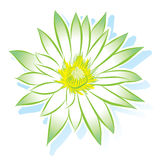 Vector flower lotus Stock Photography