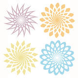 Vector flower pattern. Blooming colorful flower pattern illustration in white base Royalty Free Stock Photo