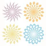 Vector flower pattern. Blooming colorful flower pattern illustration in white base vector illustration