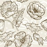 Vector Flower Pattern. Vintage. Seamless brown floral pattern wiht poppies bouquet Stock Images