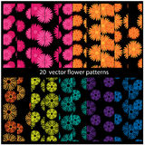 20 Vector flower patterns Stock Images