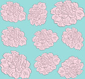 Vector flower pink peony seamless pattern Royalty Free Stock Image