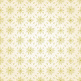 Vector flower seamless pattern background. Elegant texture for backgrounds. Classical luxury old fashioned floral Stock Photos