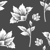 Vector flower seamless pattern element. Elegant texture for backgrounds. Stock Photography