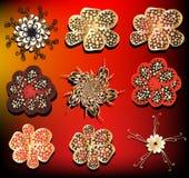 Vector flower set. Colorful  flower set, design elements Stock Image