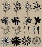 Vector flower set. Floral design elemenets Royalty Free Stock Photo