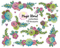 Vector flower set with hand drawn succulents Stock Image