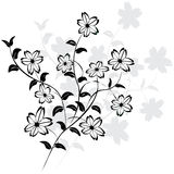 Vector flowers Royalty Free Stock Photos