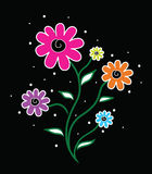 Vector flowers. Image of colorful Vector flowers Royalty Free Stock Images
