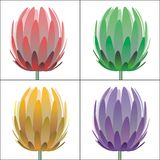 Vector flowers Stock Images
