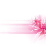 Vector Flowers Background Royalty Free Stock Photo
