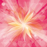 Vector Flowers Background Stock Images