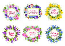 Vector flowers bouquets for Hello Spring quotes. Hello Spring greeting springtime flowers bouquets. Vector icons of floral bunches, blooming tulips and roses Stock Image