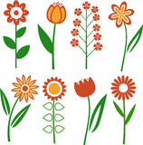 Vector flowers Royalty Free Stock Photography