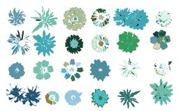 Vector flowers collection. Vector isolated elements on the white background. vector illustration