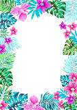 Vector flowers. frame for invitations. Stock Image