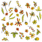 Vector flowers, leaves and plants Stock Photography