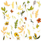 Vector flowers, leaves and plants Royalty Free Stock Photo