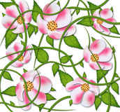 Vector flowers PATTERN  design Stock Photography