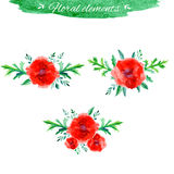 Vector flowers set, Beautiful floral hand drawn watercolor bouquet, bunch of flower arrangement, with red poppy and vector illustration