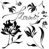 Vector flowers set. Black on white stock illustration