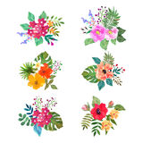 Vector flowers set. Colorful floral collection with leaves and f Royalty Free Illustration