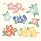 Vector flowers set. Colorful floral collection with leaves and flowers, Hand Draw Vintage . Spring or summer design for invitation Royalty Free Stock Photos
