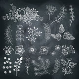 Vector  flowers set  on school Board Stock Photography