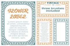 Vector flowers vintage labels on different versions for decoration and design. Three brushes included.  Royalty Free Stock Photos