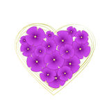 Vector flowers violets Stock Images