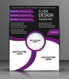 Vector Flyer Design - Business Stock Images