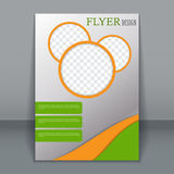 Vector flyer template for design Stock Image