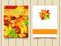 Vector flyers with colorful autumn leaves. Stock Photos
