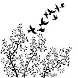 Vector flying birds silhouettes and tree foliage Royalty Free Stock Images
