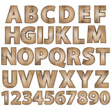 Vector font set of wood ecology font. 