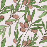 Vector food olive pattern. Natural Green plant. Italian branch ingredient. Organic texture background. Vector food olive pattern. Natural Green plant. Italian vector illustration