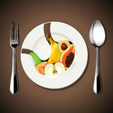 Vector of food in Stomach on white plate Royalty Free Stock Images