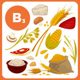 Vector food with vitamin B3. Set with illustrations of food with vitamin B3. Ingredients for health: meal, bread, corn, mushroom. Healthy nutrition, diet with B Royalty Free Stock Image