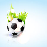 Vector football design Stock Images