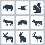 Vector forest animals icons Royalty Free Stock Photo