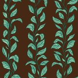 Vector Forest Background. Leaf of Tea or Coffee Stock Photo