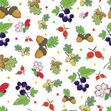 Vector Forest Berries Nuts Seamless Pattern Stock Photos