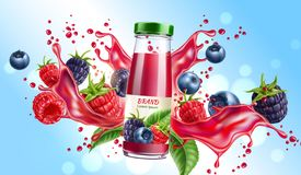 Vector forest berry mix juicy splash motion royalty free illustration