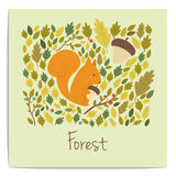 Vector forest card with acorns,leaves and squirrel Stock Photo