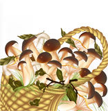 Background with vector mushrooms  on white Royalty Free Stock Photos