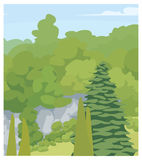 Vector forest. Trees. Vector illustration of forest. Green different trees Royalty Free Stock Photography